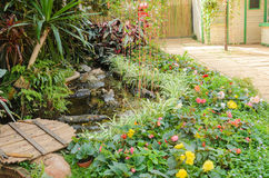 Tiny corner garden flower and plant designs Royalty Free Stock Photo