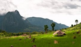 Tiny cottage in the jungle. In laos around luang, prabang Royalty Free Stock Images
