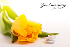 Tiny cup of coffee and yellow tulips Royalty Free Stock Photos