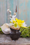 Tiny decorartion with daffodil Royalty Free Stock Images