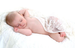 Tiny Dreamer Stock Photography