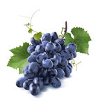 Tiny dry blue grapes bunch leaves  on white Stock Image