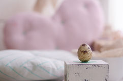 Tiny egg. Quail egg standing on the vintage box Royalty Free Stock Images