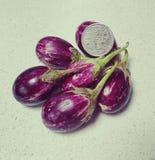 Tiny eggplants stock photo