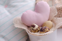 Tiny eggs. Quail eggs in the small cup Stock Image