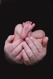 Tiny Feet Royalty Free Stock Image