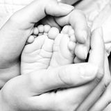 Tiny feet royalty free stock images