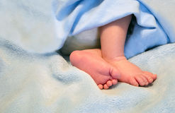 Tiny feet and baby toes Royalty Free Stock Images