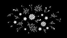 Tiny field flower realistic embroidery. Wild herbs daisy textile print decoration black fashion traditional vector. Illustration vintage design template Royalty Free Stock Images