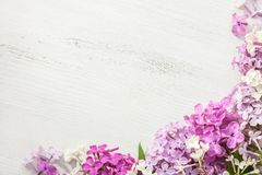 Tiny flowers of Lilac on an old wooden background. Floral border stock photography