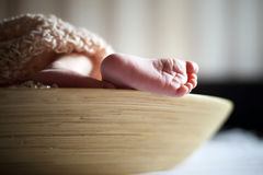 Tiny foot of newborn baby Royalty Free Stock Photo
