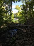 Tiny forest river to lake. Forest hidden river to lake Stock Photo
