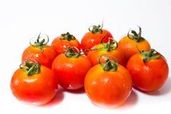 Tiny Fresh Tomato Royalty Free Stock Image