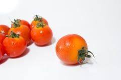 Tiny Fresh Tomato Stock Image