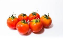 Tiny Fresh Tomato Stock Photography