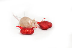 Tiny golden mouse sits on a white background next to two shiny decorative red hearts. Royalty Free Stock Photo