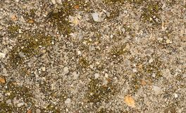 Tiny gravel texture Stock Image