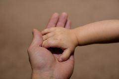 Tiny hand of son and big   dad Royalty Free Stock Photo