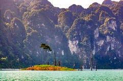 Tiny island, Khao Sok National Park Royalty Free Stock Image