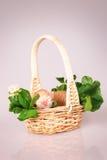 Tiny kitten in basket Stock Photo