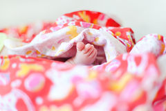 Tiny leg newborn baby in pink diapers Stock Photo