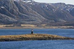 Tiny lighthouse Royalty Free Stock Photo