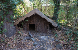Tiny maori style house in forest Royalty Free Stock Images