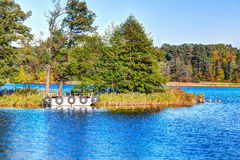 Tiny mooring berth in the forest Stock Photography