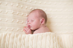 Tiny newborn baby sleeping under knitted blanket Stock Photography