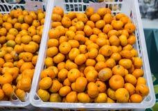 Tiny Orange in Plastic Box Stock Photo