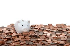 Tiny piggy bank on table of pennies Royalty Free Stock Photo