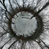 Tiny Planet in Icy Forest Stock Image