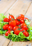 Tiny plum tomatoes Royalty Free Stock Photo