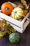 Tiny pumpkins in wooden box on table Stock Photo