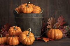 Tiny pumpkins in wooden bucket Stock Photos