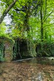 Tiny river in the Irish countryside surrounded by trees and vegetation. A t4iny river in the Irish countryside surrounded by trees and vegetation stock photos