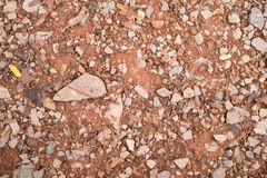 Tiny Rock or Stone and Red Brown Gravel Texture Background. Rock or Stone and Red Brown Gravel and Tree Branch Texture Background for design stock image
