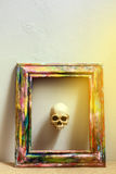 Tiny skulls in colorful wooden frame Stock Image