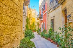 The tiny street with plants in Naxxar, Malta. The tiny street with plants in pots is a very cozy and calm, despite its located in the center of the town, Naxxar royalty free stock photo