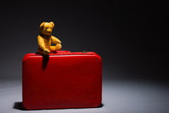 Tiny teddy bear Royalty Free Stock Photo