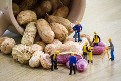 Tiny toy mining peanuts Stock Image