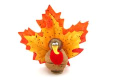 Tiny Turkey for Thanksgiving Stock Photo