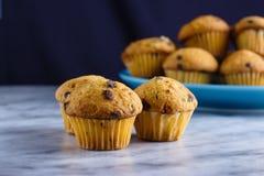 Tiny vanilla chocolate chip muffins stock photo