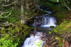 Tiny Waterfalls Stock Photography