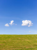 The tiny white cloud is over the green grass field Royalty Free Stock Image