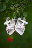 Tiny white and pink shoes for baby girl Stock Photo