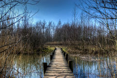 Tiny wooden bridge Royalty Free Stock Image