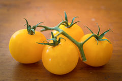 Tiny Yellow Tomatoes Royalty Free Stock Photography