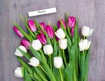 Tio vita och tio rosa tulpan Royaltyfria Foton