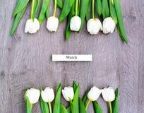 Tio vita tulpan vid en ferie av våren Royaltyfri Fotografi